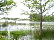 106 ACRE LAKE