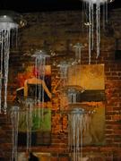 Doug Rhodehamel's Night of 1,000 Jellyfish