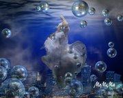 MOMEMart Photomontage5