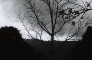 ิblack&whiteFilm