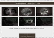 screen shot 3D Hedgehog presentation