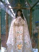 Flecha del la Virgencita II