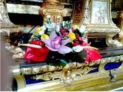 Flores que o Papa Francisco ofereceu a Nossa Senhora.... =)