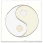 yin:yang