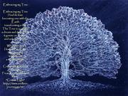 embracing my tree2