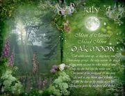 Oak Moon by Angie Latham
