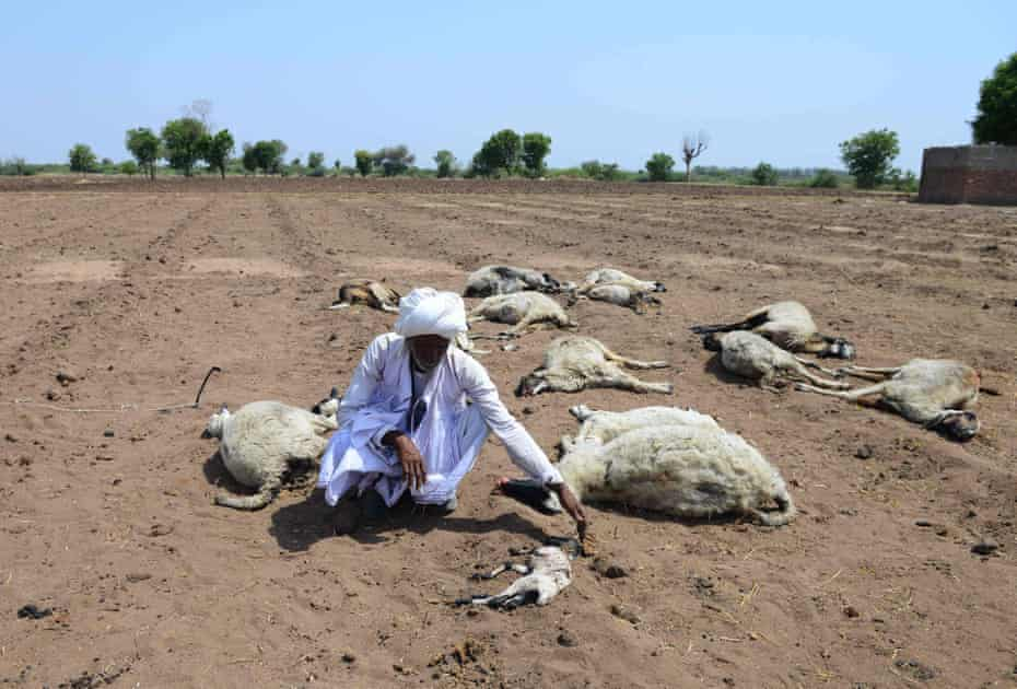 The Guardian: Indian villages lie empty as drought forces thousands to flee
