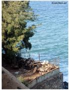 Gorée214