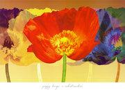 Robert Mertens - Poppy Tango