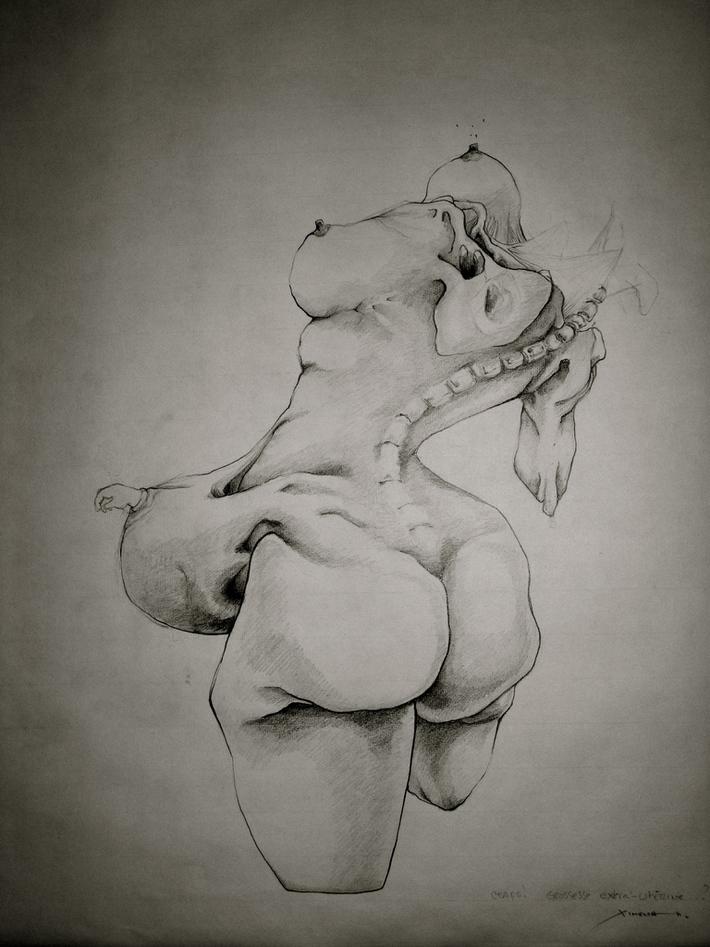 grossesse extra-utérine1
