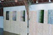 expo des photos de bambous
