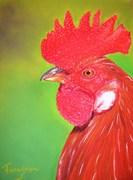 Après les poules, voici le coq