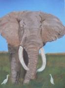 Encore un éléphant