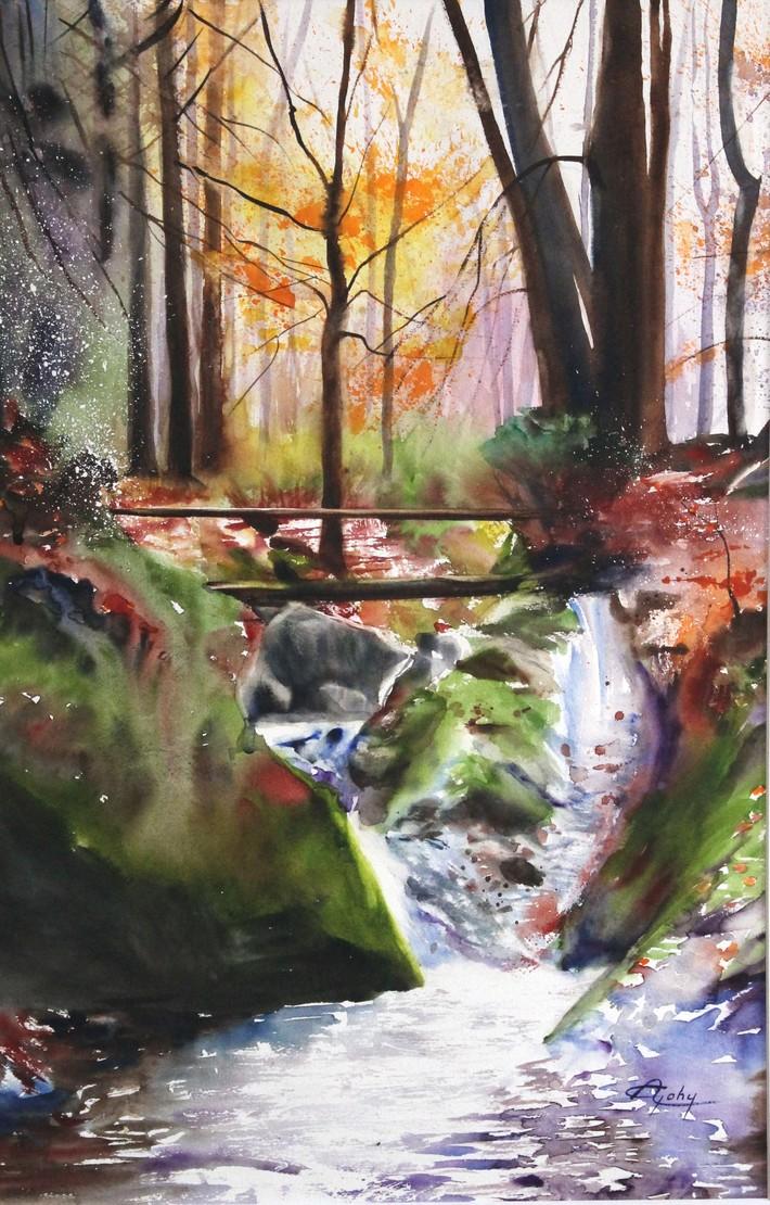 Cascade dans une forêt wallonne