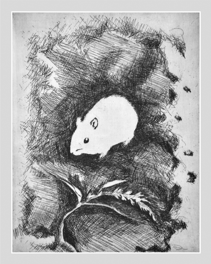 In the Burrow - etching