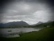 Le lac au nénuphars