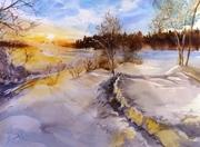 Aurore hivernale -