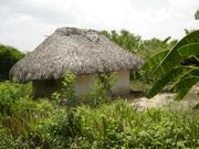 casa tipo tradicional