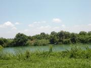 Río Tamesí