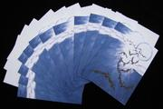 .Winged Fury (Midnight Syndicate/Halloween inspired) 12 pc Blank Note Card Set with Envelopes