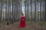A/W 2014 Red Riding Hood & the Wolf