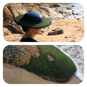 Moss green & patent hat