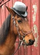 Megan in her Derby hat
