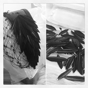 Feathers headpiece
