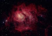 M8 Lagoon Nebula in Sagit.