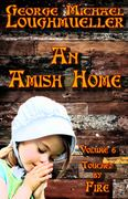 An Amish Home - Touched by Fire