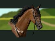 Den bruna hästen