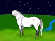 häst i vildmarken