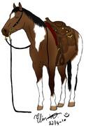 En western häst
