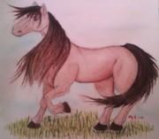 Min första häst!!!:D