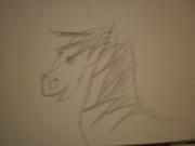 Teckna manga och hästar