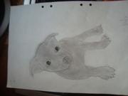 En valp ritad av mej,Annie ;D