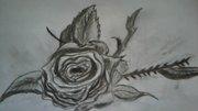 ros 2