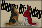 Happy Birthday Nelly