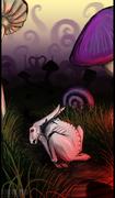 Wonderland Demise