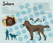 Sahara character sheet