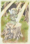 Link och Navi