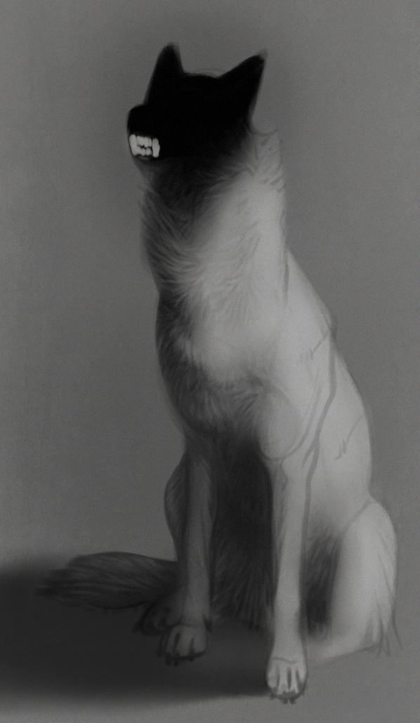Lydig hund