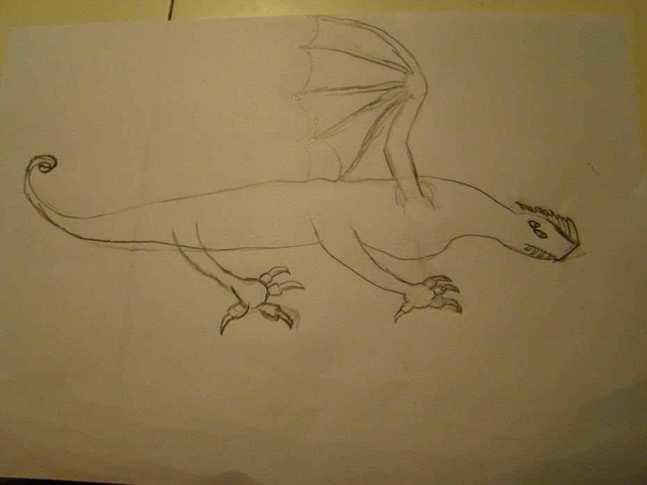 Cliff Head Dragon