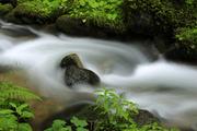 Interferencie vody
