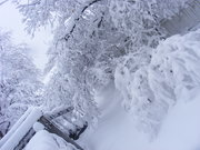 Late April Snowstorm