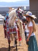 Plains Indian Horse Regalia
