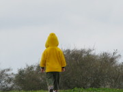 child and trees