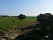 A Walk around North Coastal Antiparos