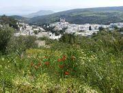 Hike from Lefkes to Drios, via Langada