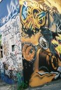 Picturo Project 2010